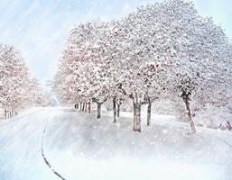 wintertime by fenida