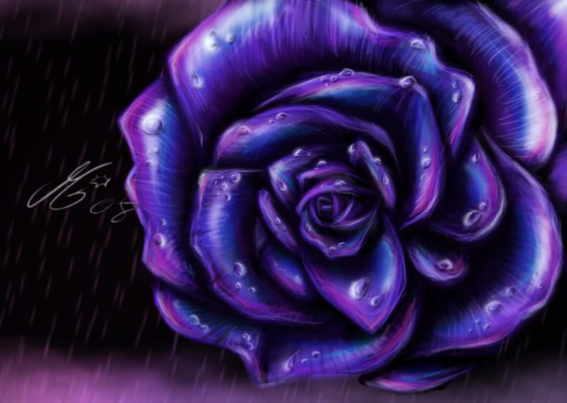 Purple rose by mallemagic on deviantart for Purple rose pictures