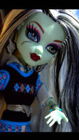 Monster High's Frankie Stein