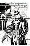 Punisher inks