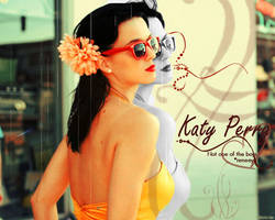 Katy perry not one of the boys by reneeya