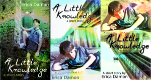 A Little Knowledge Covers