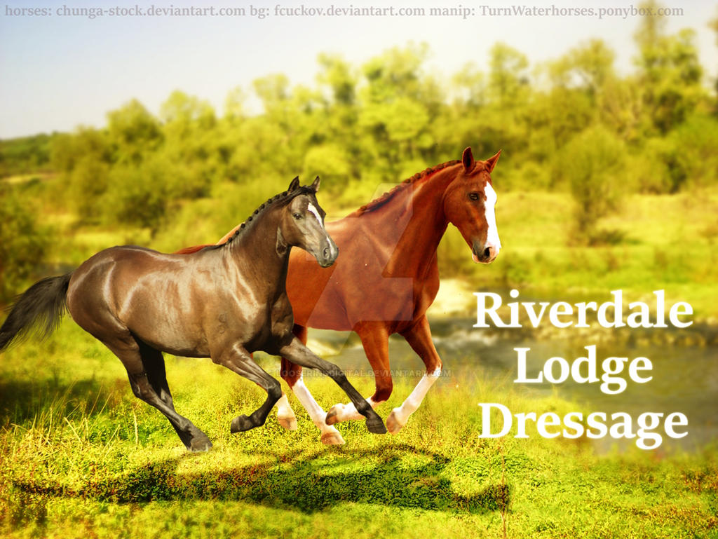 Riverdale Lodge Dressage