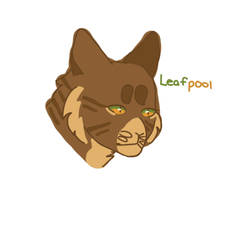 Leafpool Sketch by Dogismymiddlename