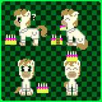 Calpony Birthday Spritesheet