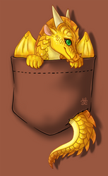 Wings of Fire - Pocket Sunny T Shirt Design by Biohazardia
