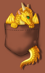 Wings of Fire - Pocket Sunny T Shirt Design