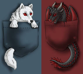 Game of Thrones - Pocket Ghost and Drogon by Biohazardia