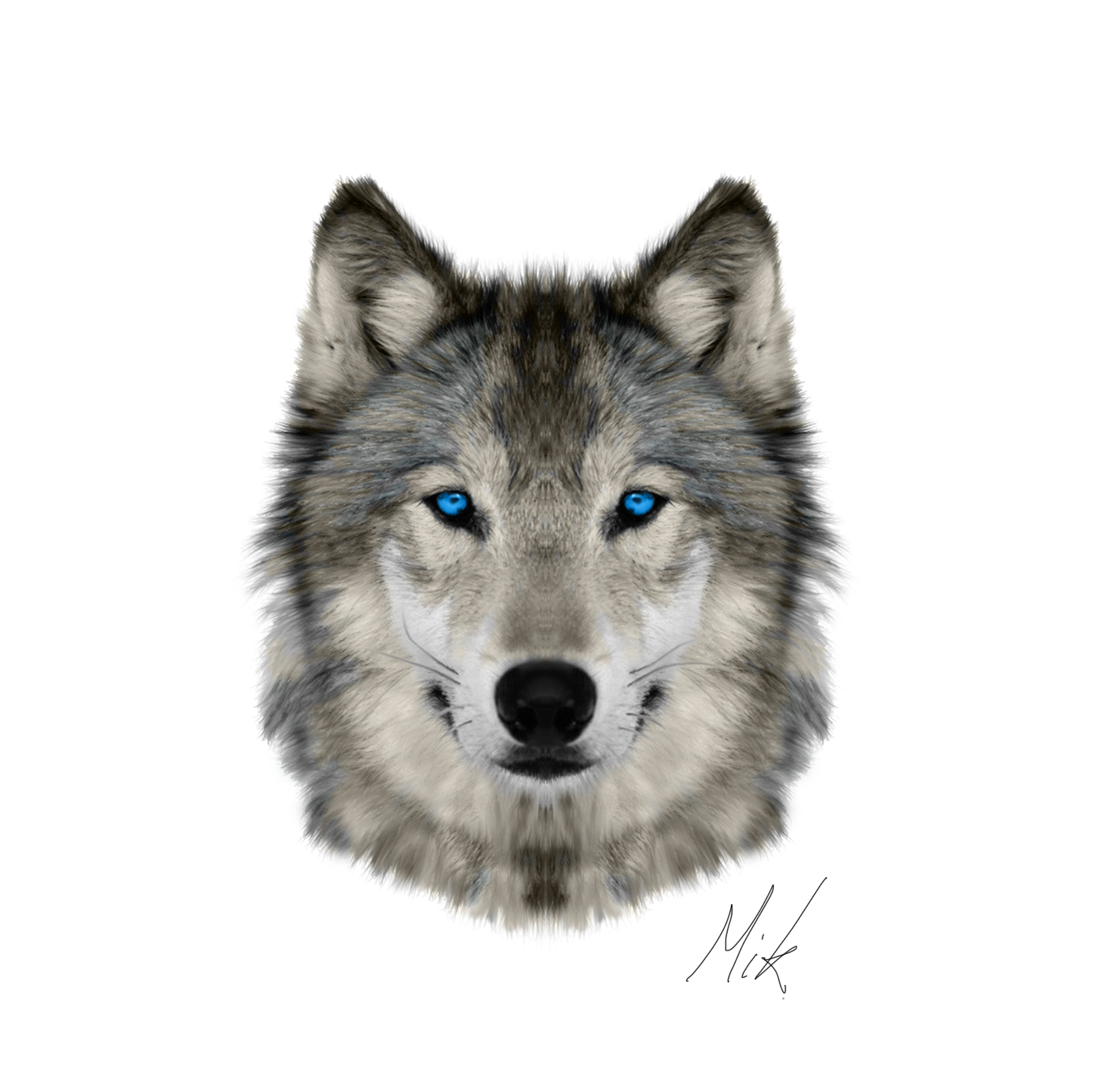 wolf face by mikstyx wolf face by mikstyx