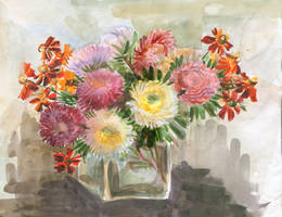 asters and coneflowers