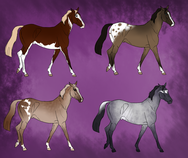 Natural Horse Adopts - 1 LEFT by Kawisaurus