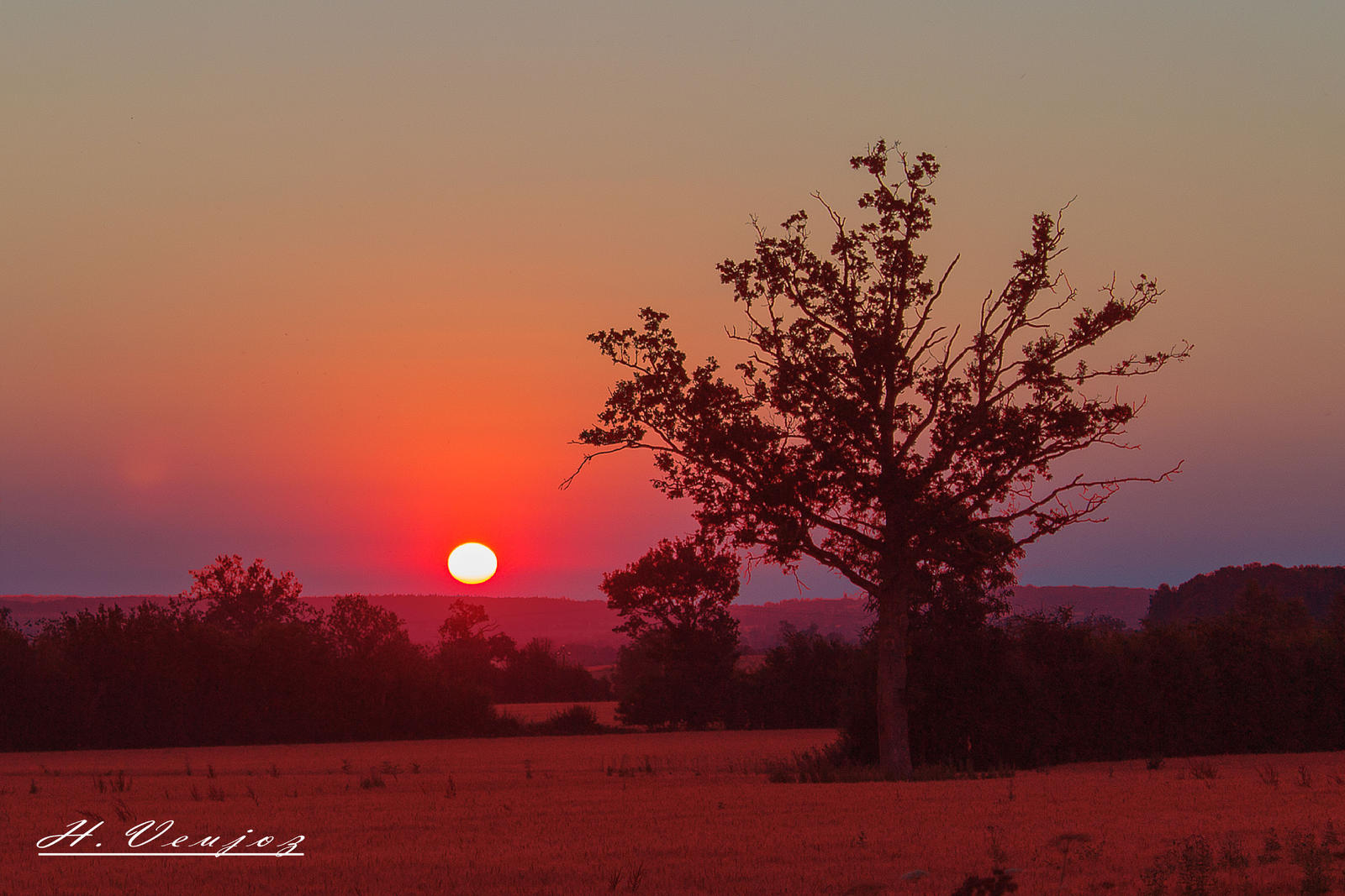 sunset in the countryside of Orne France by hubert61