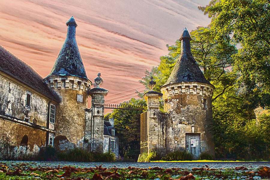 Between the Chateau Le Pin La Garenne by hubert61