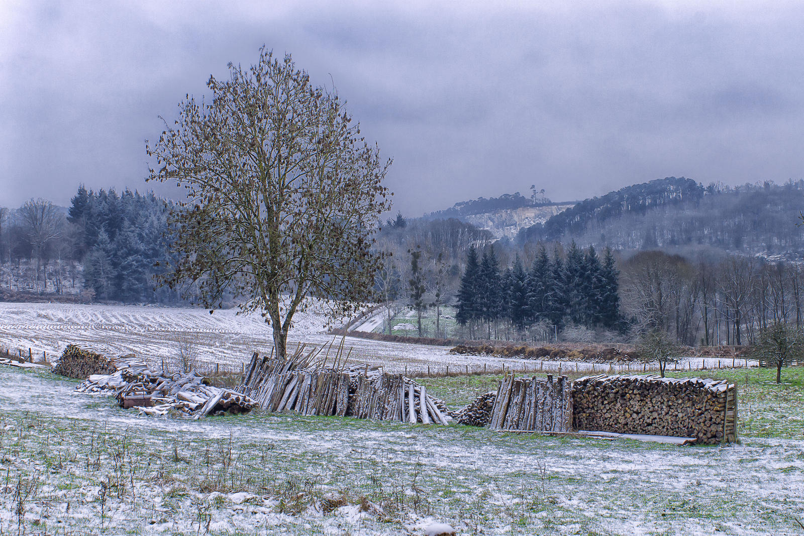 A side of the valley of misery Sarthe France by hubert61