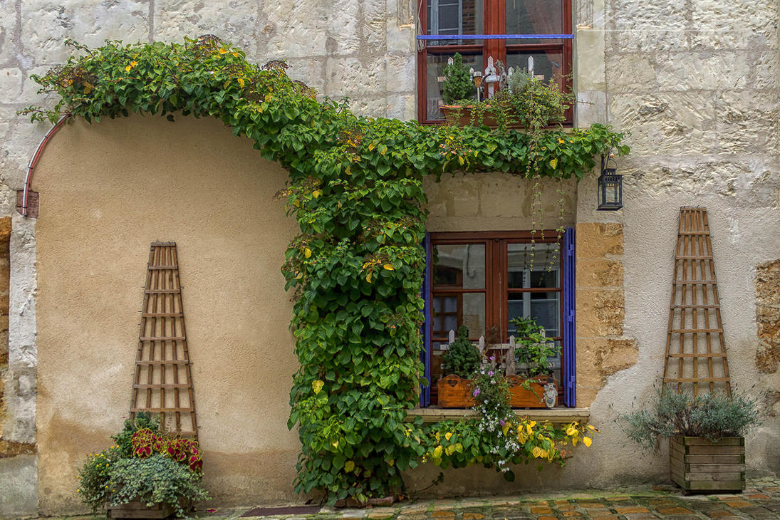 facade12 Mortagne au Perche Orne France by hubert61