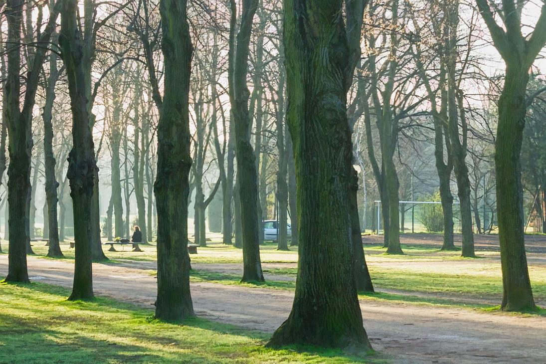 75014 La Ville En Nature by hubert61