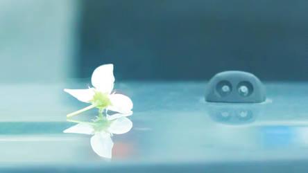Une Fleur Passe