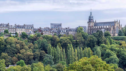 Fougere2 by hubert61