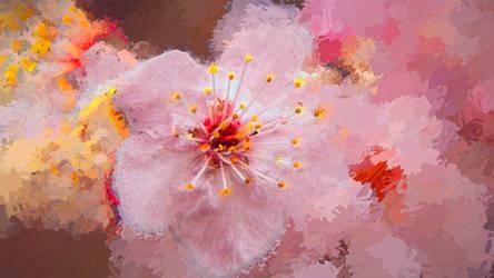 Fleurs Des Champs21 by hubert61