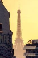 mars 2019 Paris (112) by hubert61