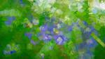 2020-05-04  Fleurs Des Chanmps1