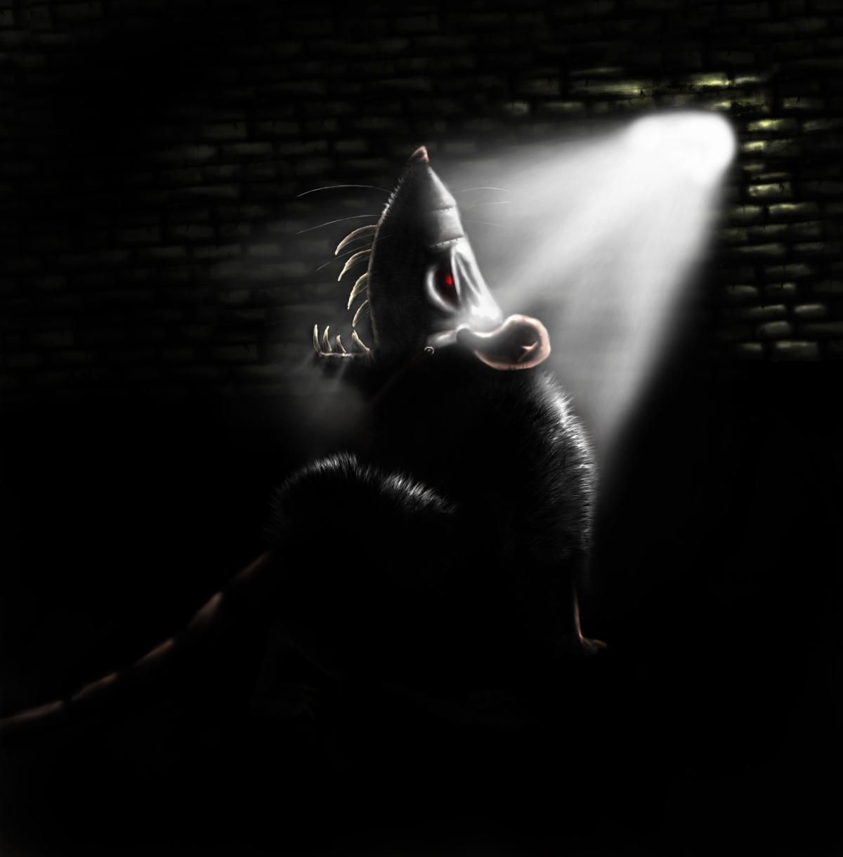 https://fc08.deviantart.com/fs29/f/2008/075/4/2/Black_rat_by_DiBBiEZ.jpg