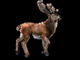 Elk PNG by LG-Design