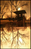 Pagoda Ripples by smrtass
