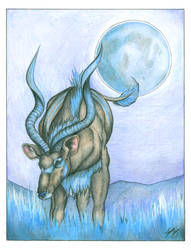 Kivuli by Gray-Ghost-Creations