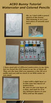 ACEO Rabbit Coloring Tutorial