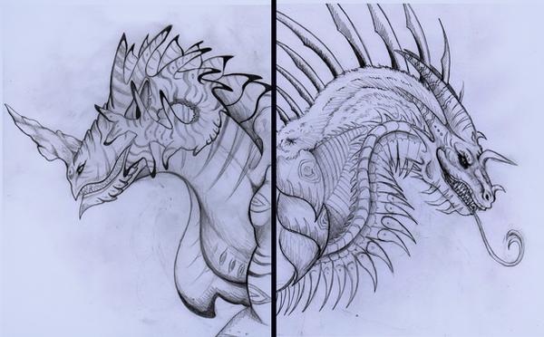 Dragons by MorRokko