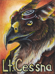 Lt. Cessna Badge by Gray-Ghost-Creations