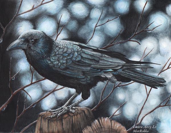 The Raven by MorRokko