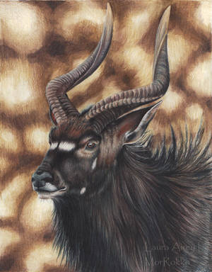 Nyala by Gray-Ghost-Creations