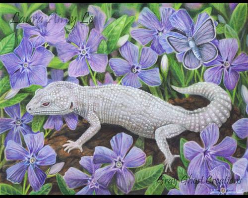Leopard Gecko Garden