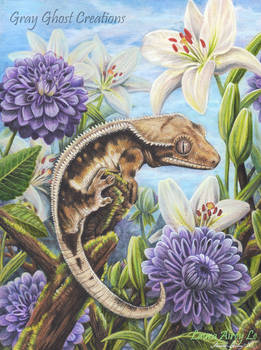Crested Gecko Garden
