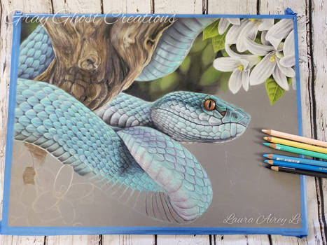 Blue Insularis - Work in Progress