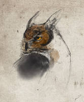 Horned owl study by Wrennars