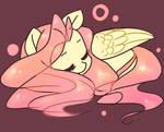 Sleeping Shy