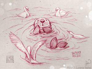Day 27 - Sea Otter -