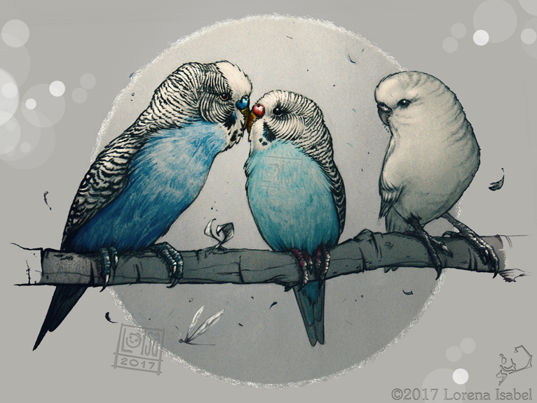 Parakeets love by Loisa
