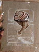 03 - Snail by Loisa