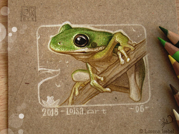 06 - Green tree Frog by Loisa