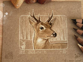 10 - Deer by Loisa