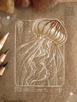 11 - Jellyfish by Loisa
