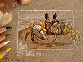 15 - Ghost Crab by Loisa