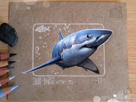 17 - Shark by Loisa