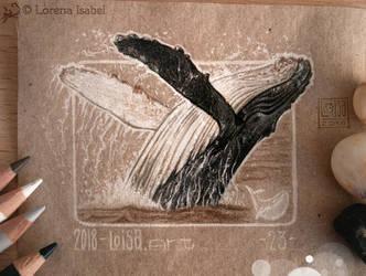 23  - Whale