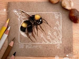 32 - Bumblebee -