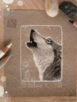 39 - Gray Wolf - by Loisa